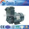 Cer Diplom-Selbst-Saugende Pumpe des Wasser-PS-126