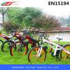 Bici di montagna elettrica del cavaliere facile Bycicle con il motore