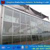 VenloのタイプガラスはHydroponicシステムでトマトの温室をカバーした