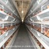 LayersおよびBroilersのための自動Poultry Farm Machinery