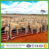 Горячий DIP гальванизировал панель ярда 7 овец рельса для ранчо