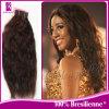 第1人間の毛髪の織り方のバージンのブラジルの毛の織り方(GP-BNW16 )