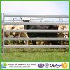 панель скотного двора 5bar 42X115mm