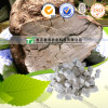 Cocos naturais puros Wolfiporia Extensa de Poria da medicina da erva de 100%