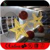 Luz dos motivos da estrela do diodo emissor de luz 3D para a decoração do Natal