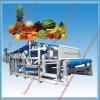 La presse de courroie de fruit la meilleur marché fabriquée en Chine