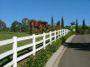 馬の/Residentiaの塀(高品質)