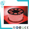 옥외 Decorative Lighting 220V 100m Redflat LED Rope Light/Flexible Strip Light