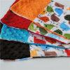 Cubierta llana material 100% del amortiguador de los patrones de Minky del poliester