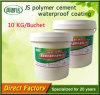 L'altro tipo materiale cemento di impermeabilizzazione dell'acqua del polimero ha basato il rivestimento per la parete interna