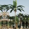 庭Decorative 35f Fake Artificial Coconut Palm Tree
