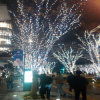 Luz de Navidad verde impermeable al aire libre del color LED