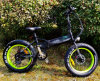 Europa Style Electric Bicycle mit Samsung Hidden Battery