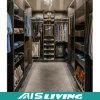 Estilo clásico de los muebles caseros construido en el armario del guardarropa (AIS-W288)