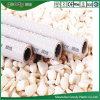 Alta calidad del tubo y de la guarnición de PPR en precio barato