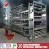 Самая лучшая клетка бройлера цыпленка цены для конструкции Fram цыплятины (H4B208)