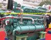 двигатель тепловозного мотора скорости средства 750HP/720rpm Yuchai морской морской (YC6CL745L-C20)