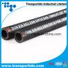 En DIN 853 R2 5/8  pour le boyau en caoutchouc hydraulique