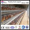 Cage de ferme de poulet de couche d'oeufs de 4 rangées
