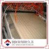 Máquina de madera de la protuberancia del panel de la puerta del plástico WPC (SJSZ-92/188)
