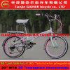 Fahrrad-Stall-Qualität des Tianjin-Gewinner-20  faltende