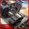 Cylindrical Roller Bearing (N2313m)의 Semri & Tfn Brand