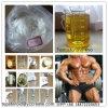 99% Testosteron-Propionat (CAS: 57-85-2) für männliches Muskel-Wachstum