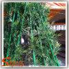Bambu artificial do preço plástico e razoável para a decoração