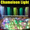 Più nuovo Chameleon Car Light Wrap Film per Headlight Protection