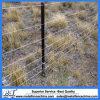 Poste en acier normal de frontière de sécurité de l'Australie