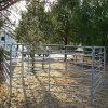 Загородка фермы для Cattles и лошади