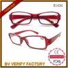 Vidros de leitura dobráveis com estojo R1426