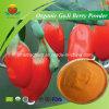 Poudre organique de baie de Goji de fabriquant-fournisseur