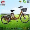 Triciclo eléctrico del cargo de la batería de litio con la bici del pedal