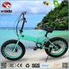 elektrisches Fahrrad des fetten Gummireifen-250W