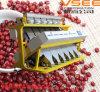 Машина процесса еды сепаратора фасоли сортировщицы цвета красной фасоли Vsee