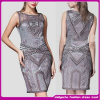 O Long o mais atrasado Maxi Dress, Design Ladies Fashion Dress, Sleeveless 2015 Dresses para Women (DFG5H)