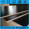 A madeira compensada barata do preço da madeira de pinho/película Phenolic enfrentou a fábrica da madeira compensada