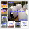 Mini gonfiabile Tent per Indoor Office Used (MIC-003)