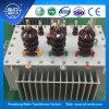 IEC 표준 S13 의 11kv Oil-Immersed 배급 변압기