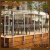Corrimano di vetro del balcone dell'acciaio inossidabile di rivestimento di spazzola del supporto della parete (SJ-S072)