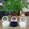 De privé Plastic Fles van de Fles van de Geneeskunde van de Fles van de Capsule van het Etiket