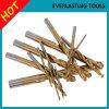 Morceaux de foret Ti-Enduits de torsion d'acier à coupe rapide