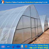 製造業者の直売最上質のHydroponicシステムフィルムカバー温室