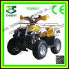 110cc, bici del patio de 125cc ATV con la certificación del Ce, colores como usted quiere, buena calidad, modelo caliente de la venta, ATV