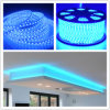 SMD5050는 Outdoo 플라스틱 덮개 ETL LED 밧줄을 방수 처리한다