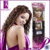 크로셰 뜨개질 Braid Hair, Curly Wave Braiding Hair의 Different Types