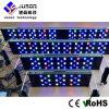 2016 광범위 고성능 LED 수족관 빛을 통합했다