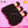полный путать надкожицы 100g освобождает 18  курчавых короткого бразильского Afro волос девственницы Kinky для сексуальных женщин