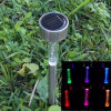 Eco Friendly Solar Powered Acryl Bubble Stake Light para o jardim Lighting
